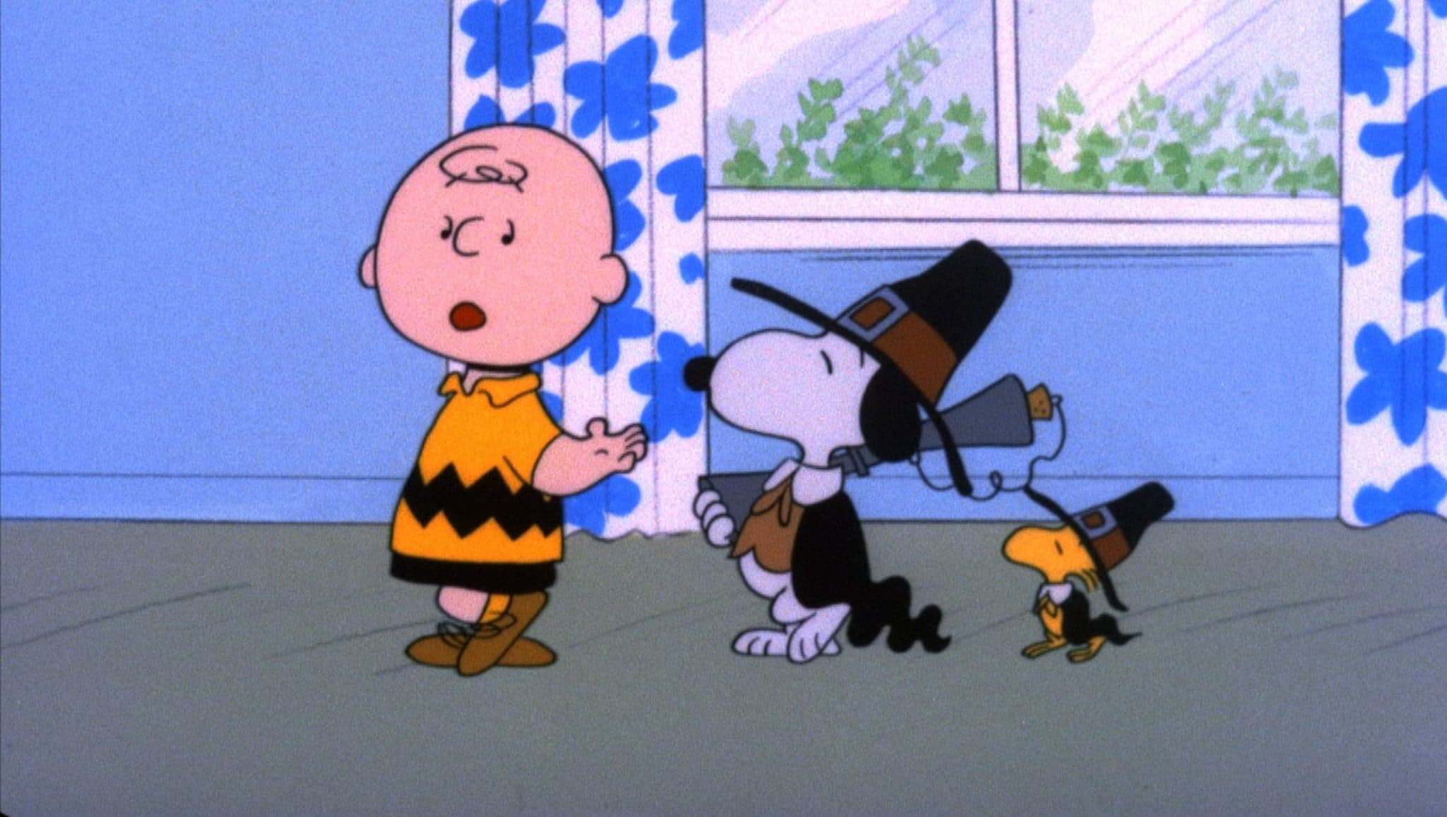 Charlie Brown, Snoopy and Woodstock in A Charlie Brown Thanksgiving