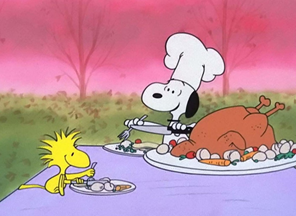 Snoopy and Woodstock in A Charlie Brown Thanksgiving