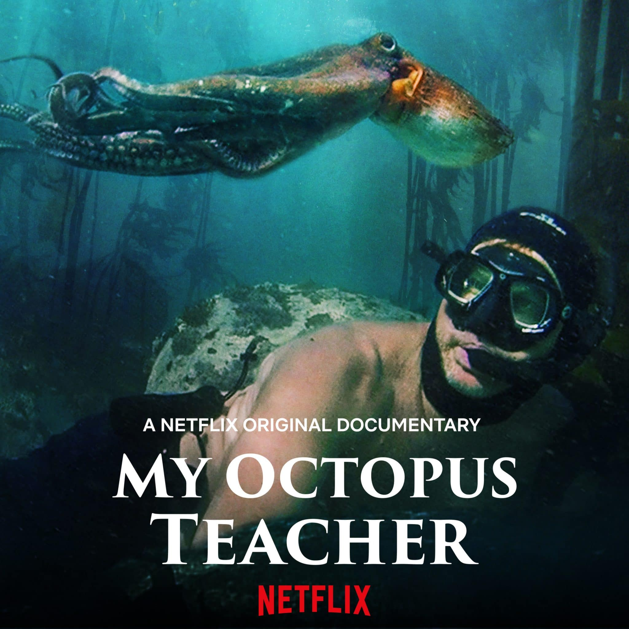 the poster for My Octopus Teacher